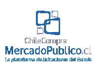 chilecompra-01